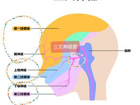 三叉神経痛が「筋膜リリース小顔矯正」で緩和された例