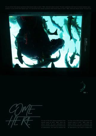 002_diving_OG.jpg