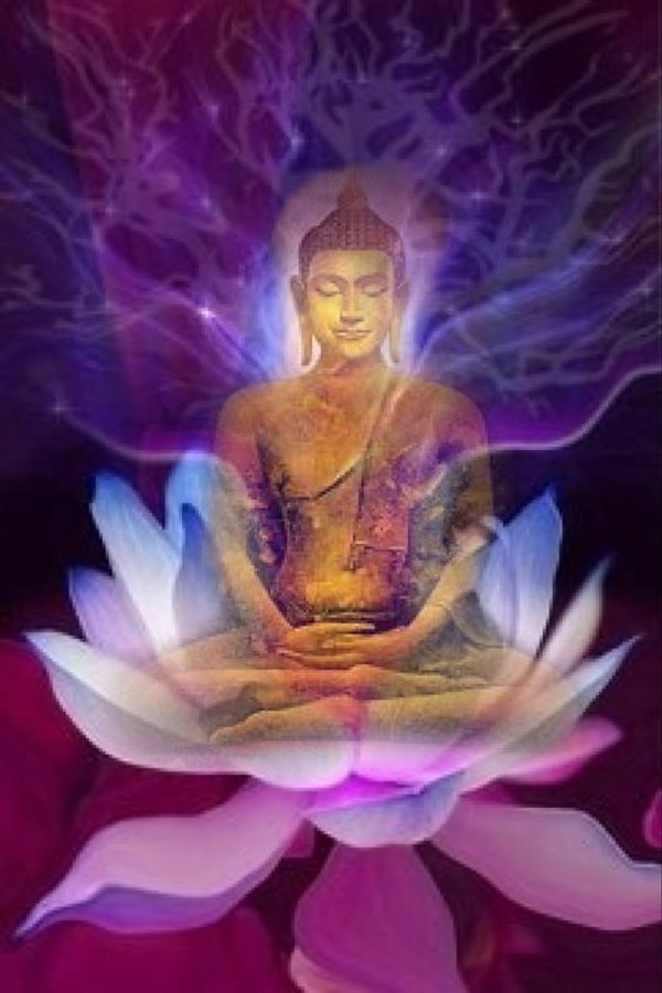 Zen Buddha on Lotus Flower pic.jpg