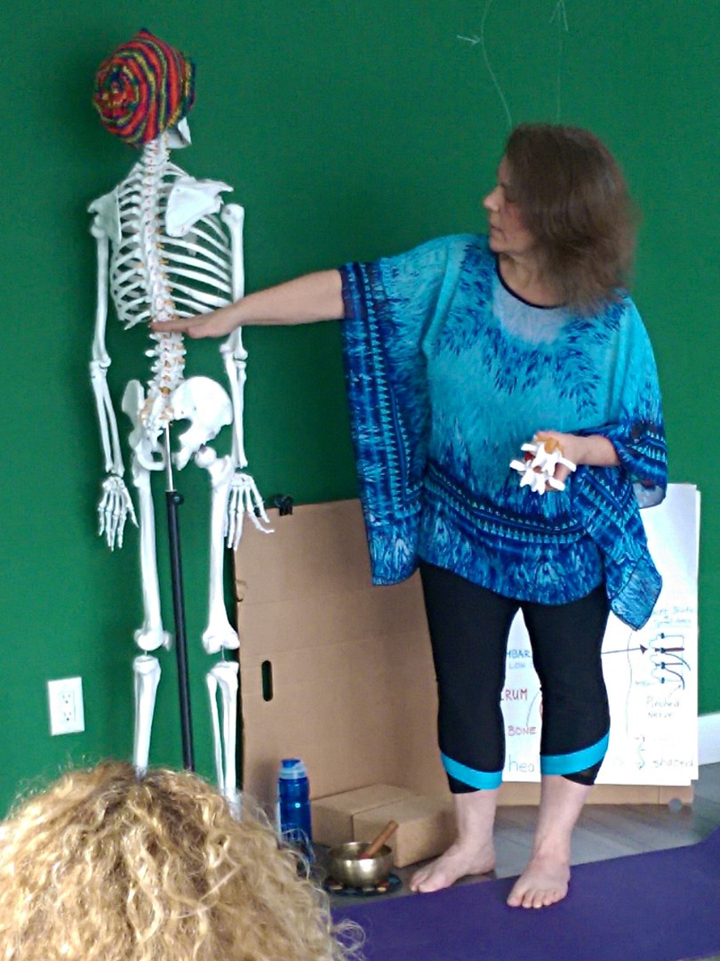 Workshop on Sciatica for Yoga Teachers