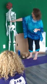 describing the lumbar spine