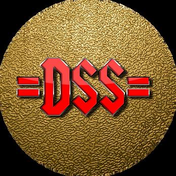 DSS PIN_bearbeitet.png