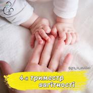Четвертий триместр вагітності