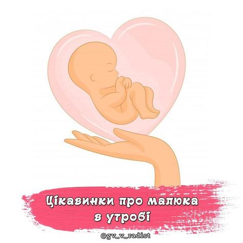 Цікавинки про малюка в утробі