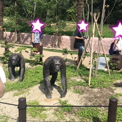東山動物園へ🐼