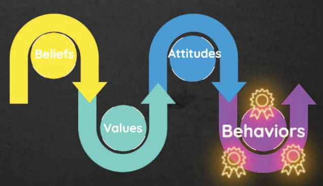 Flowchart moving from beliefs, to values, to attitudes, to behaviors.
