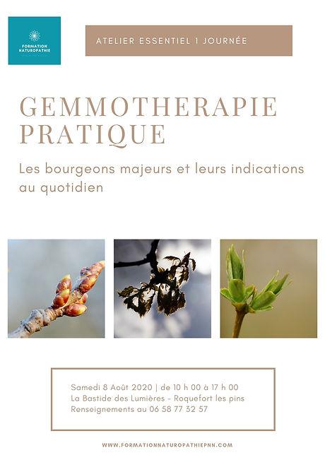 Stage Gemmotherapie(1).jpg