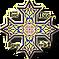 SASM Cross logo