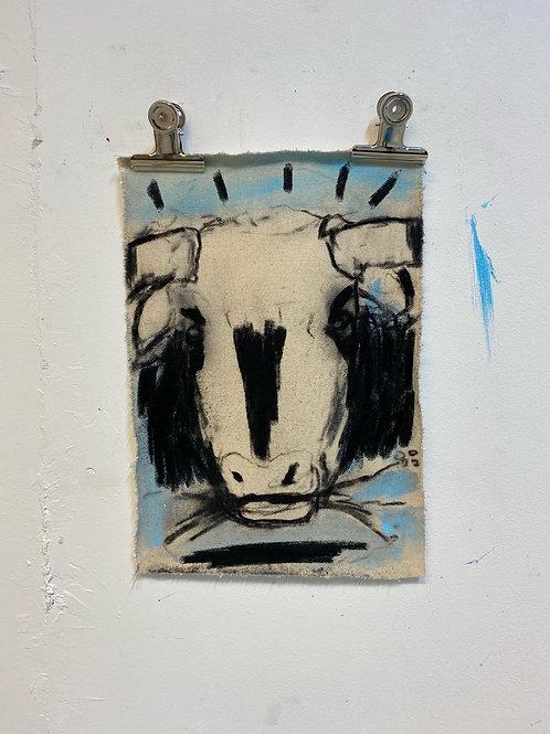 Bull 10