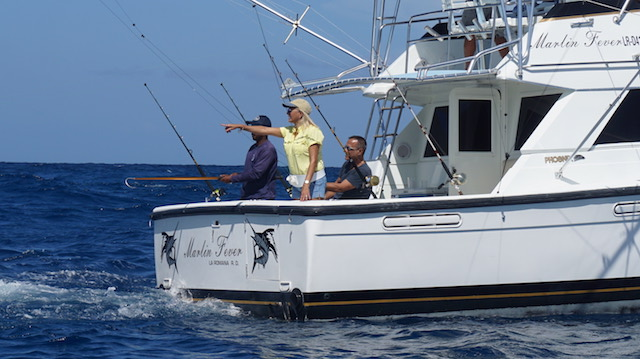 MARLIN FeVER FISHING DECK