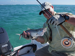 Punta Cana Inshore & Fly Fishing