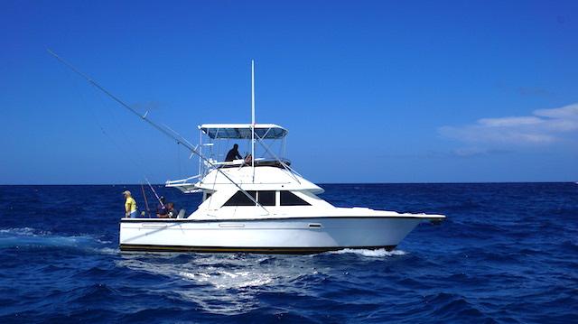marlin fever deep sea fishing