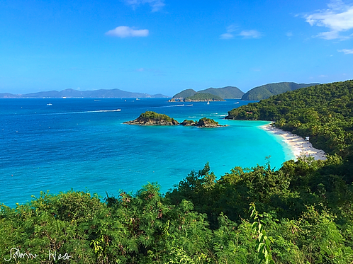 Virgin Islands Bays Collection