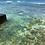 Thumbnail: Waikiki Collection