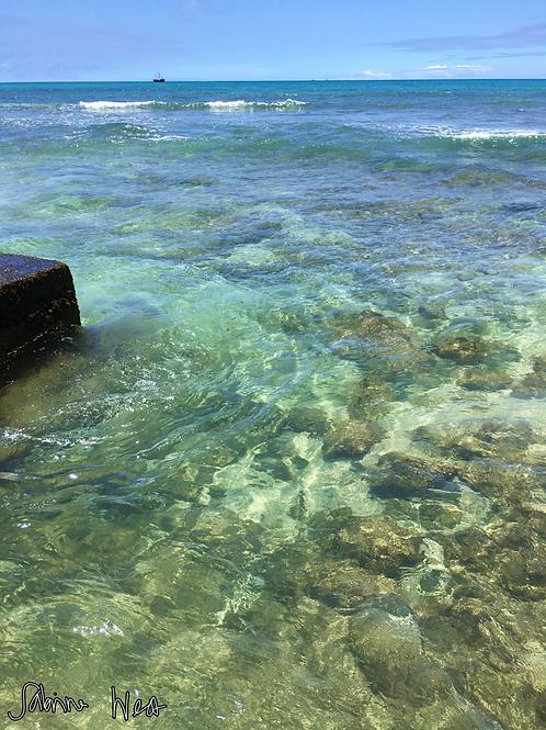 Waikiki Collection
