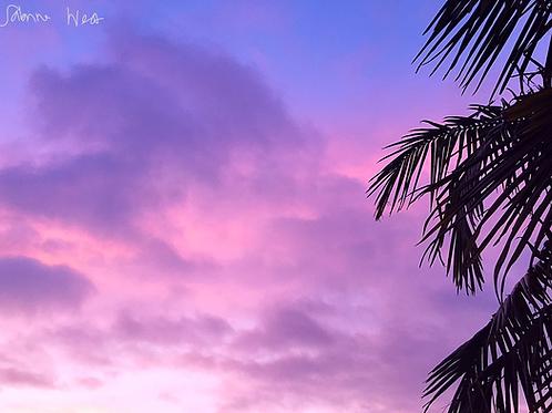 Bisexual Sunset