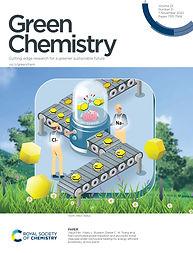 d0gc01761b_Journal Cover.jpg