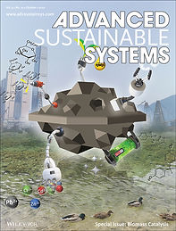 adsu.202070020_Front Cover.jpg