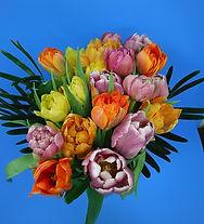 Specialty tulip bunch