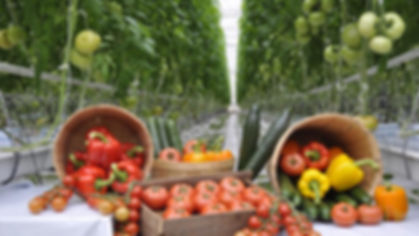 Display of greenhouse vegetables