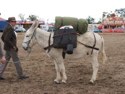 Tambo - pack class