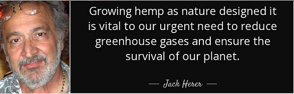 quote-growing-hemp-as-nature-designed-it