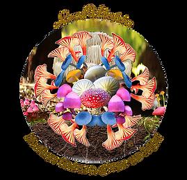 LeafUtopia Mushie Magic Mandala download