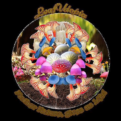 Mushie Magic Mandala