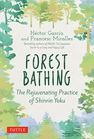 forest-bathing.webp