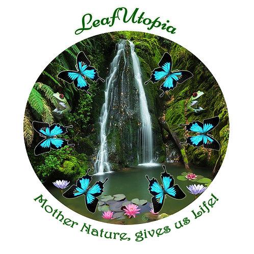 Rainforest Retreat Mandala