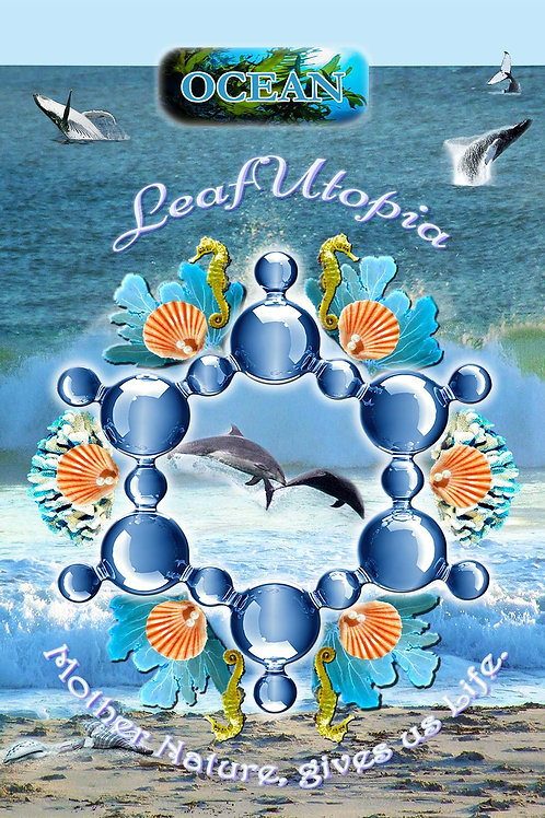 Oceania Poster
