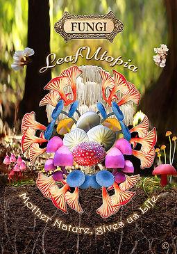 LeafUtopia Mushie Magic poster72.jpg