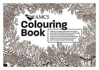 AMCS Colouring Book.jpg