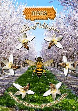 LeafUtopia BeeUtiful poster72.jpg