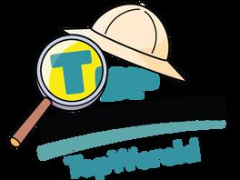 TopOntdekkers-TopWereld.png
