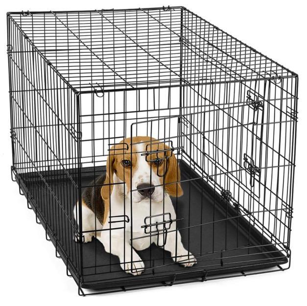 Beagle 30in Crate Double Door Folding Metal
