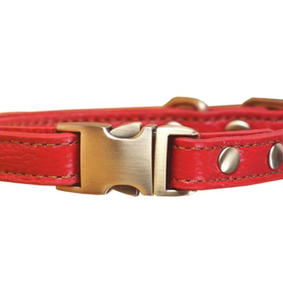 Leather Dog Collar with Quick Release Brass Buckle 12 to 17 in