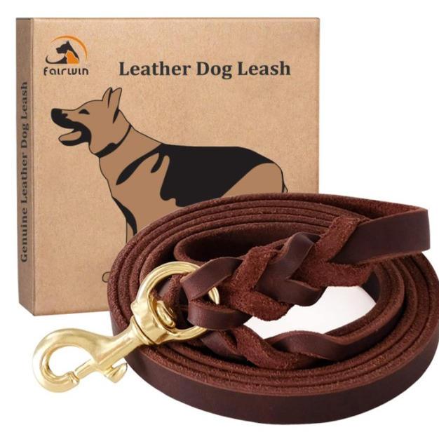 Fairwin Braided Leather Dog Training Lea