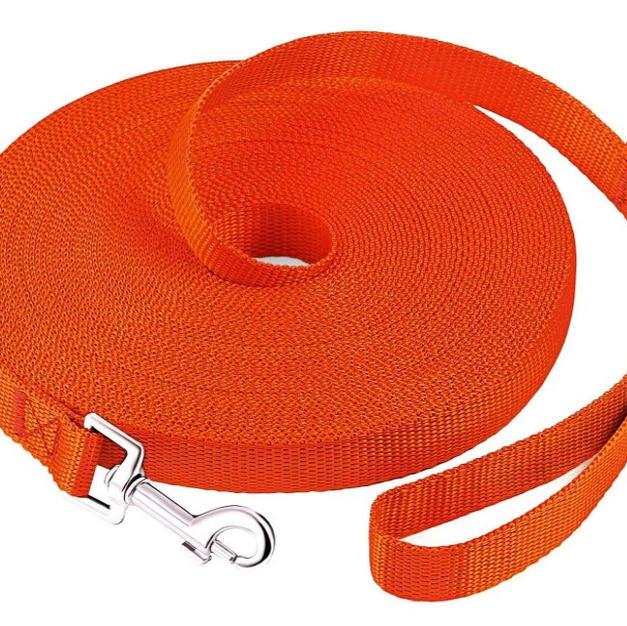 50Ft Nylon Recall Long Line Leash