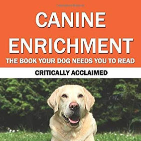 Canine Enrichment - Shay Kelly