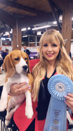 Sault Ste. Marie Kennel Club Dog Show - BPIG