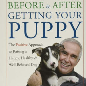 Before and After Getting Your Puppy - Ian Dunbar