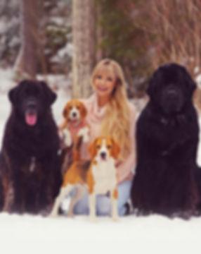 Beagles, Newfoundlands, Samantha Lengyel
