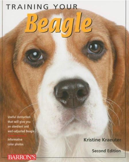 Training Your Beagle - Kristine Krauter