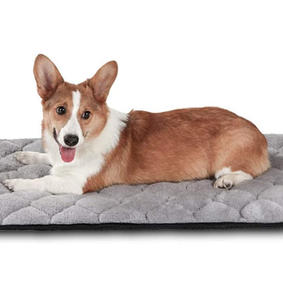 Dog Mat for Kennel Antislip Beds Cushion Padding