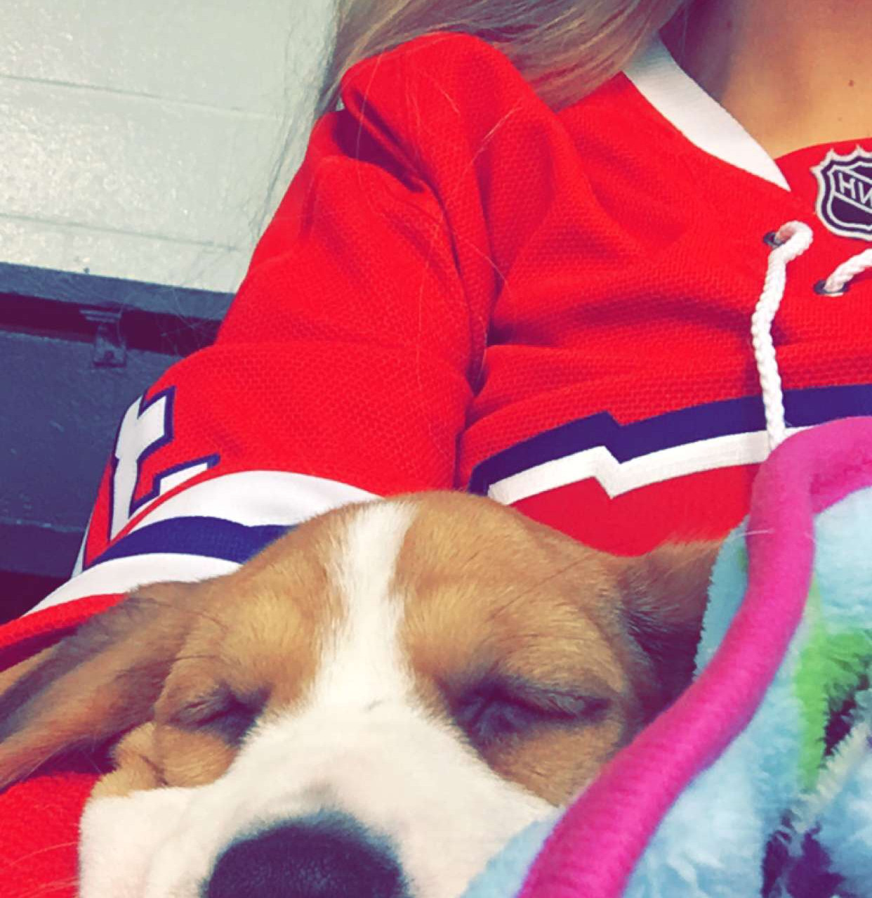 Snoozing during the hockey game
