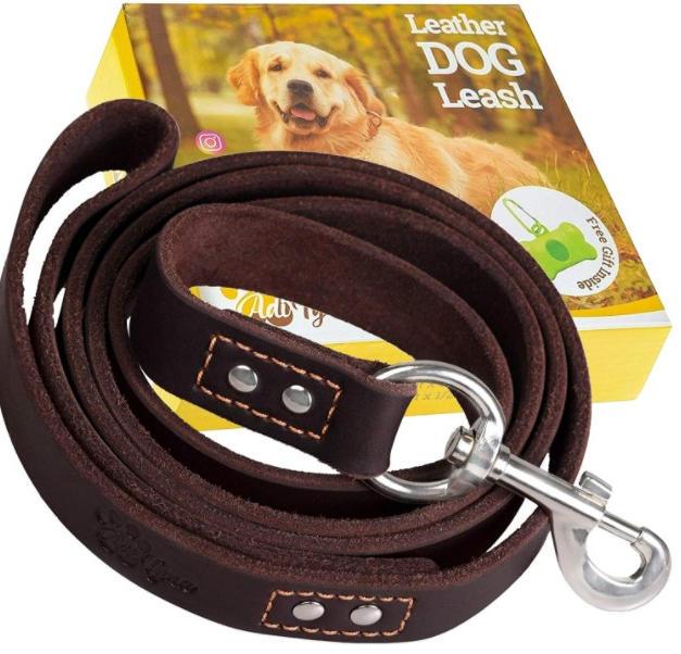 6Ft Leather Dog Leash