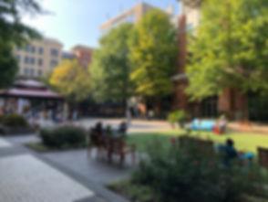 Rockville Town Square 02.jpg