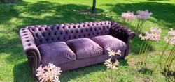 Purple Tueduo