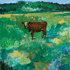 Priscilla the Cow